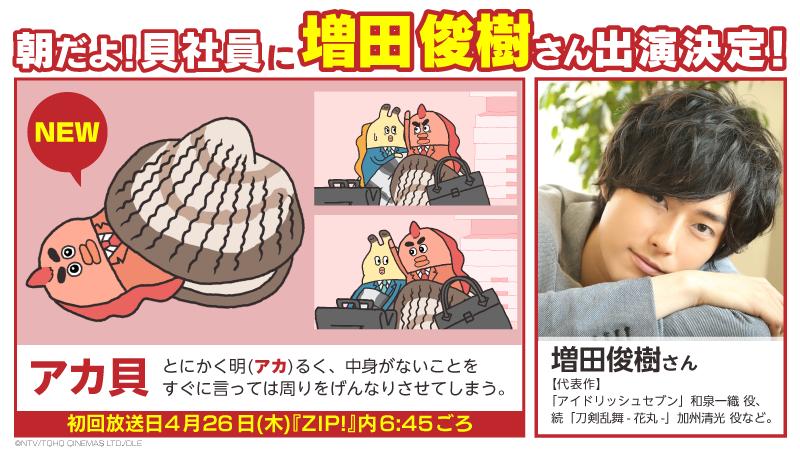 【貝社員】大人気声優・増田俊樹さんが「朝だよ!貝社員」に初登場!「アカ貝」を熱演